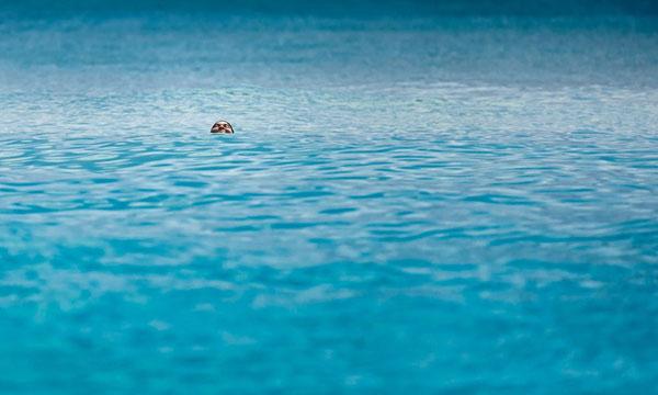 Закончилось время подачи фотографий на конкурс National Geographic Traveler 2013. Примеры работ - №22