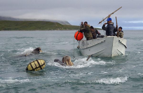 Закончилось время подачи фотографий на конкурс National Geographic Traveler 2013. Примеры работ - №29