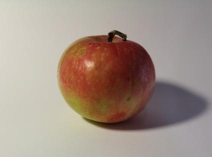Яблочко № 1