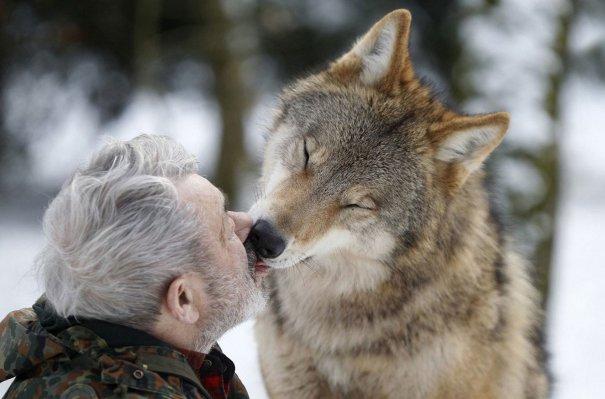 Приветствовать ученого, по волчьему закону, первым имеет право лишь вожак стаи. ...