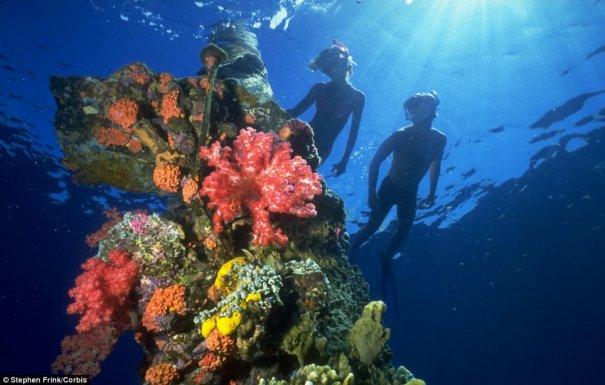 Подводное кладбище кораблей - №13