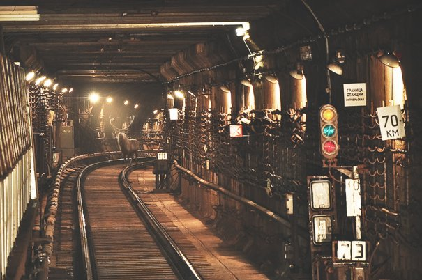 А Вы знаете, почему на самом деле поезда останавливаются в тоннелях метро? - №1