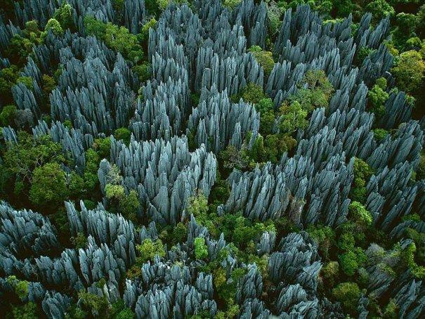 Загадочный каменный лес на острове Мадагаскар - №1