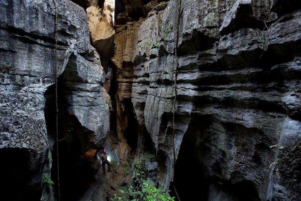Загадочный каменный лес на острове Мадагаскар - №3