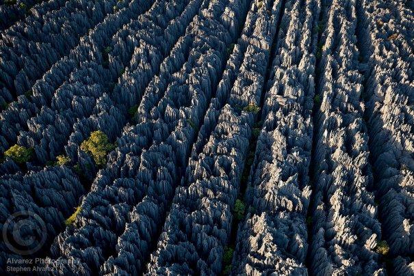 Загадочный каменный лес на острове Мадагаскар - №6