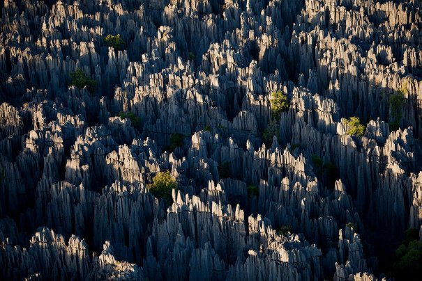 Загадочный каменный лес на острове Мадагаскар - №7