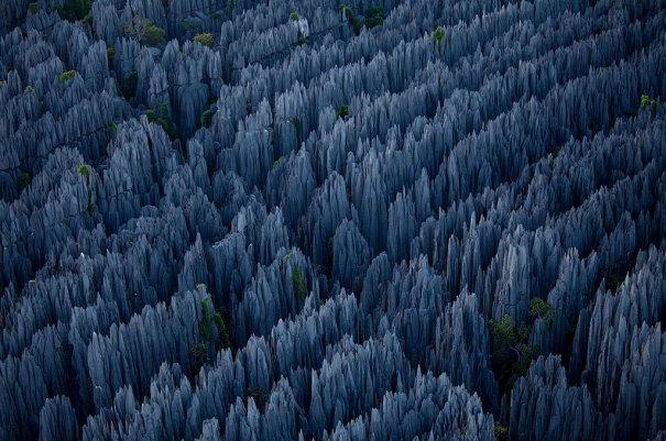 Загадочный каменный лес на острове Мадагаскар - №8