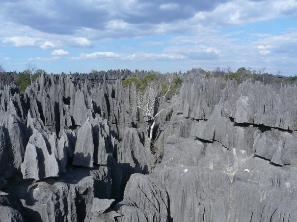 Загадочный каменный лес на острове Мадагаскар - №11