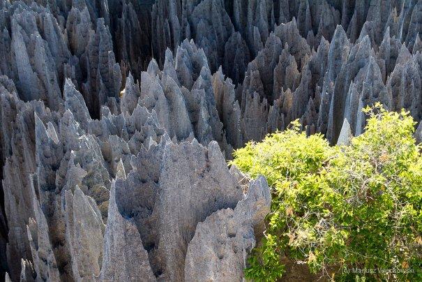 Мадагаскар фото острова