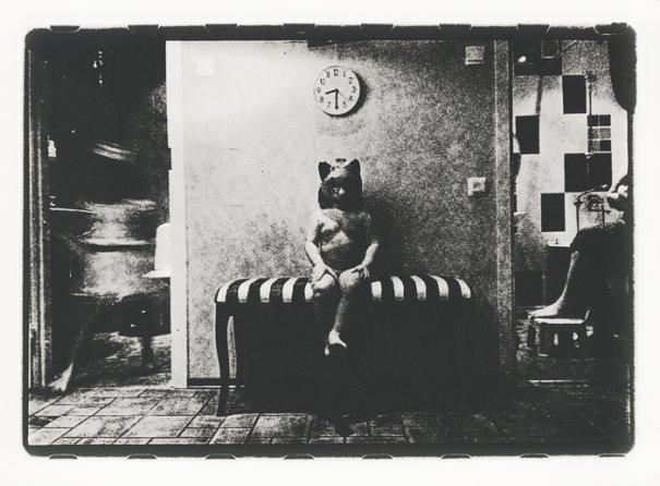 Сергей Вараксин любит случайные фото образы - №16