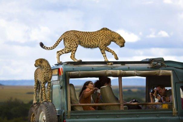Лучшие фото о путешествиях от National Geographic - №3