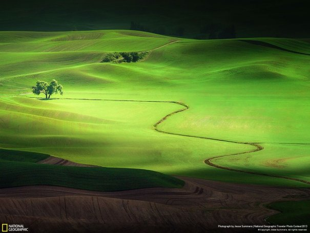 Лучшие фото о путешествиях от National Geographic - №18