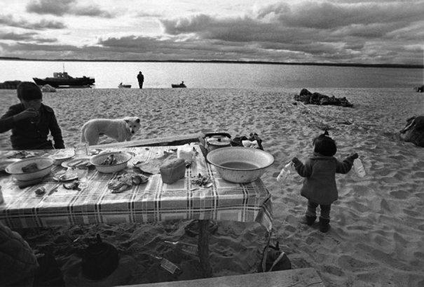 Новости в фотографиях - российские призеры World Press Photo - №12