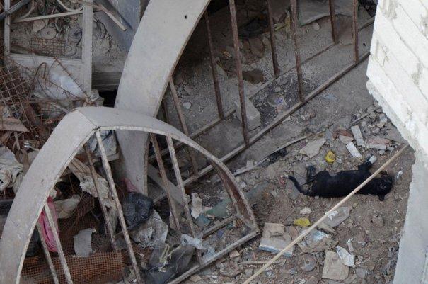 Новости в фотографиях - Газовая атака в Сирии - №7
