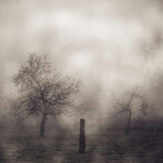 Фото природы - вдохновляющие примеры - №2