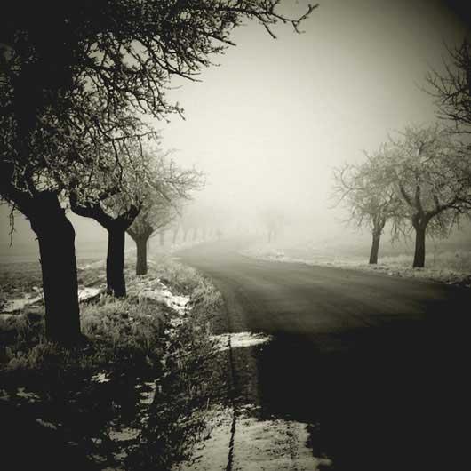 Фото природы - вдохновляющие примеры - №4