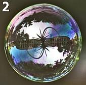 Урок фотографии - картинки в мыльном пузыре - №2