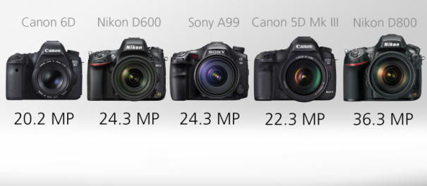 Сравнение полнокадровых зеркальных фотоаппаратов - №3