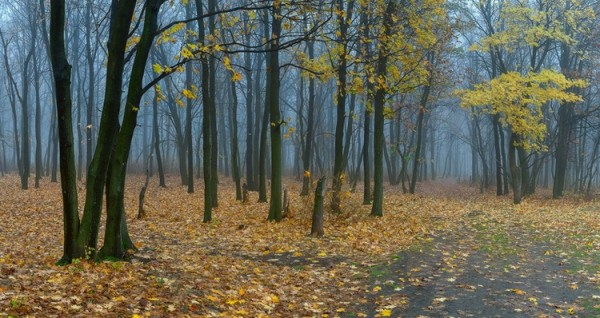 Дмитрий Балховитин. Поэзия в фото пейзаже - №16