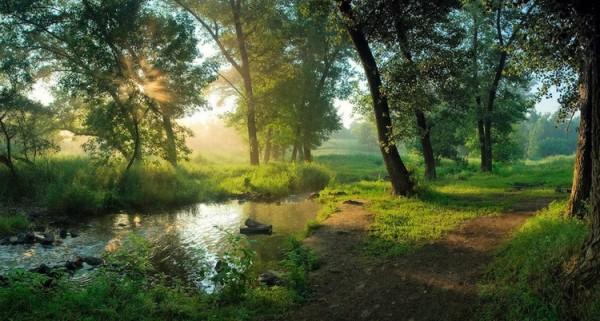 Дмитрий Балховитин. Поэзия в фото пейзаже - №17