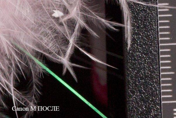 Фото камера Canon 7D против компакта Canon M в студийном тесте - №14