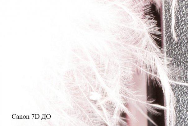 Фото камера Canon 7D против компакта Canon M в студийном тесте - №17