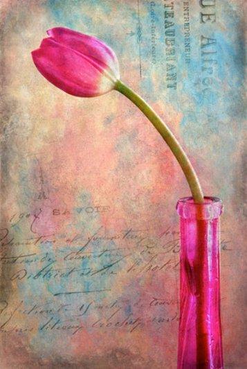 Урок Фотошопа. Цветок и живописная текстура - №1