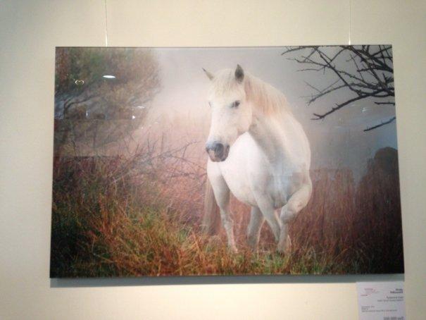 Московский фотографический салон 2013 - №2