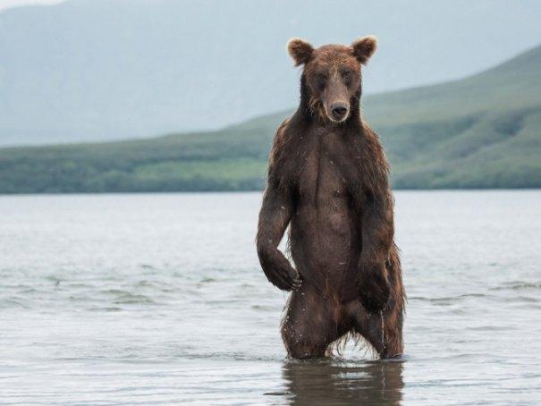 Новости в фотографиях - Лучшее от National Geographic за сентябрь - №5