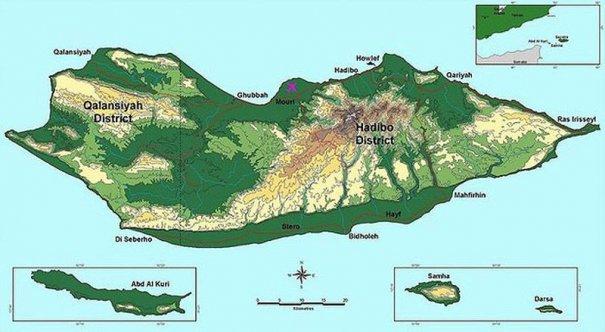 Удивительно красивые фото острова Сокотра - №1
