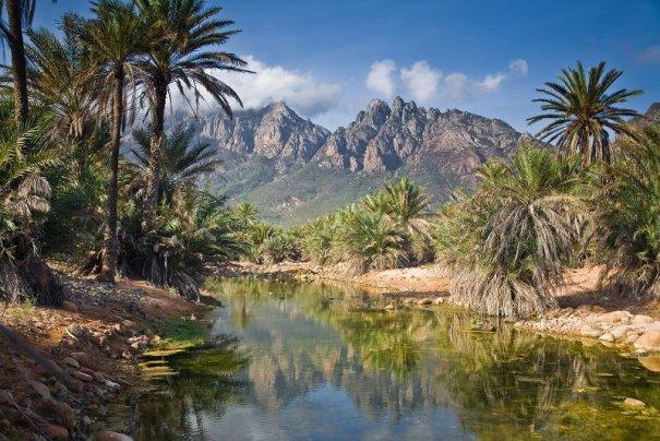 Удивительно красивые фото острова Сокотра - №8