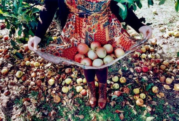 Необычная осень в красивых фото - №2