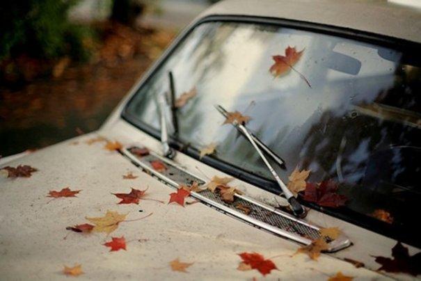 Необычная осень в красивых фото - №11