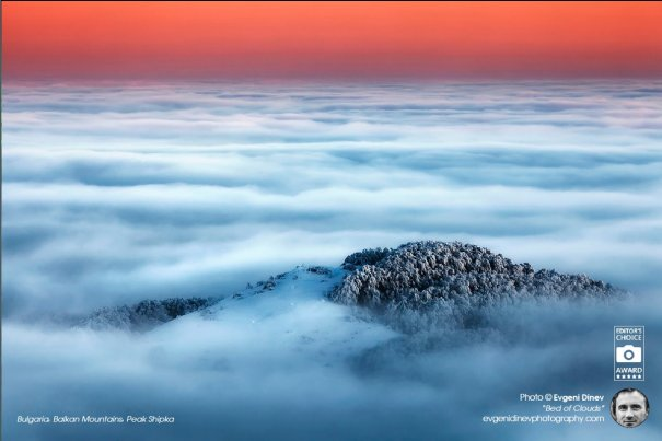 Bed of Clouds
