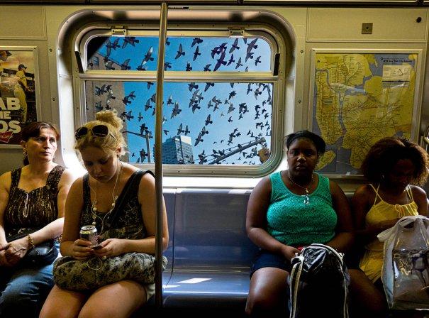 Новости в фотографиях - Кипящая жизнь в общественном транспорте - №9