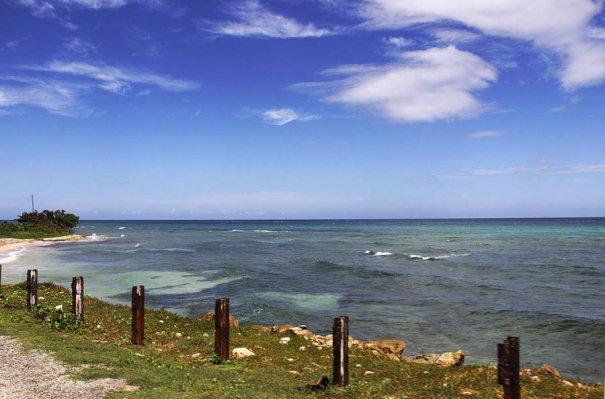 Яркие краски лета острова Ямайки - №10