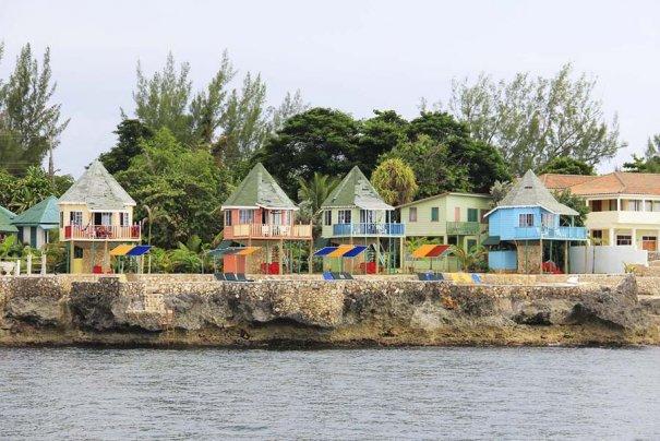 Яркие краски лета острова Ямайки - №11