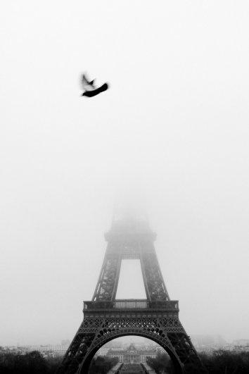 Знаменитая Эйфелева башня (Eiffel tower) - красивые фото - №26