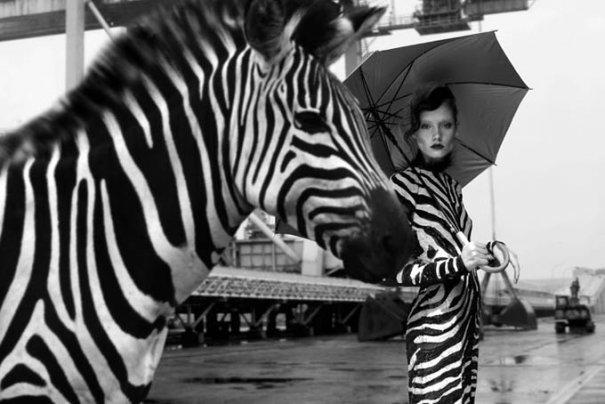 Свежие кадры необычных съемок в жанре модных фото - №7