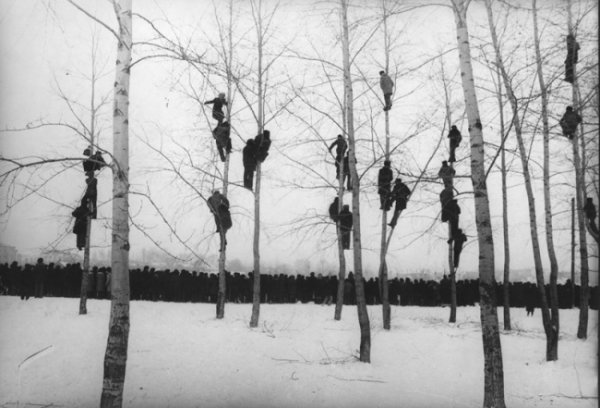 Шедевры советской фотографии от мастеров - №16