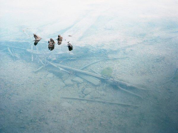 Работы фото художника Маттиаса Пола Хемпта - №14
