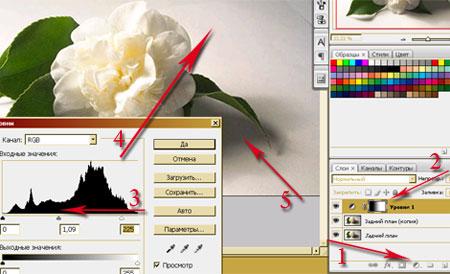 Урок Фотошопа. Как правильно выделить объект с тенями - №6