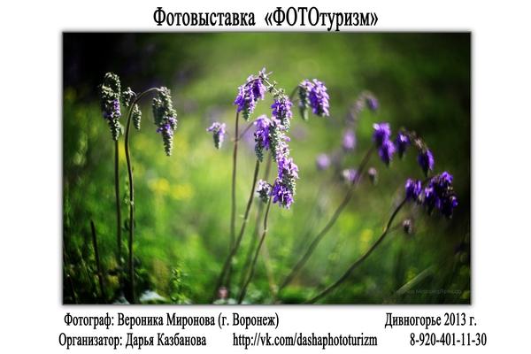 """Фотовыставка """"ФОТОтуризм"""", г. Воронеж - №3"""