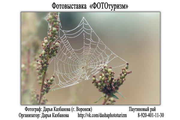 """Фотовыставка """"ФОТОтуризм"""", г. Воронеж - №17"""