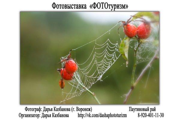 """Фотовыставка """"ФОТОтуризм"""", г. Воронеж - №18"""