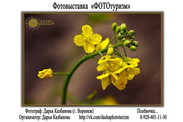 """Фотовыставка """"ФОТОтуризм"""", г. Воронеж - №19"""