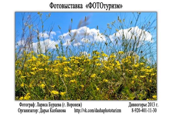 """Фотовыставка """"ФОТОтуризм"""", г. Воронеж - №40"""