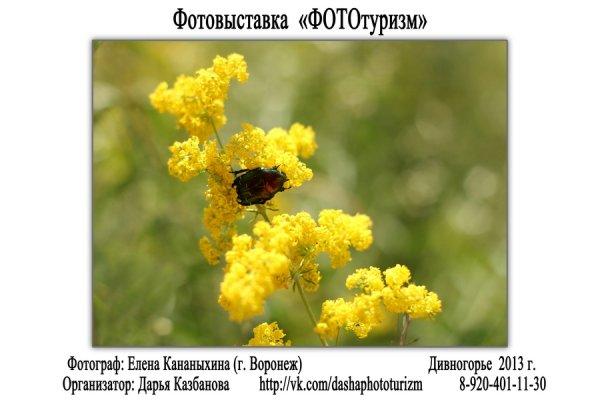 """Фотовыставка """"ФОТОтуризм"""", г. Воронеж - №44"""