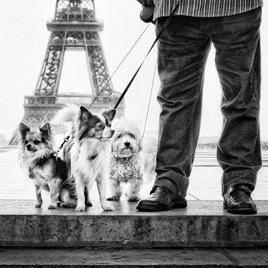 Новости в фотографиях - 30 лучших фотографов Instagram - №4