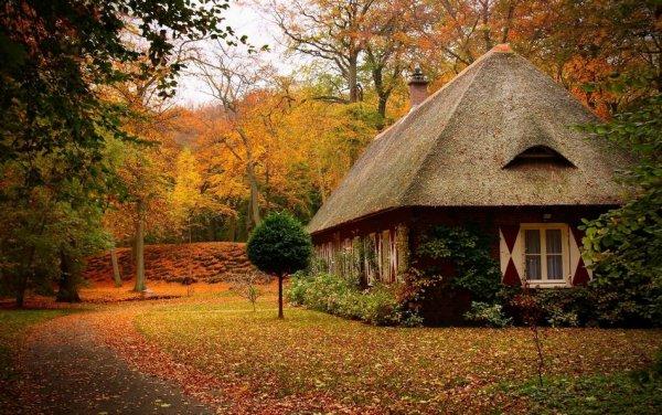 Самые красивые фото домов в лесу - №3